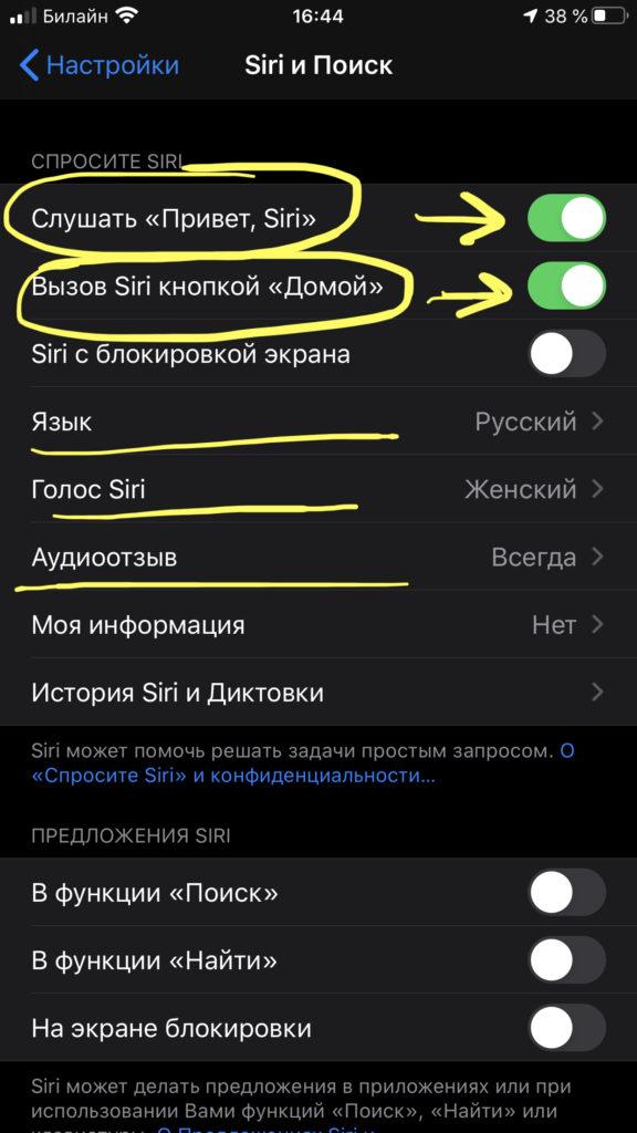 Выбираем настройки Siri