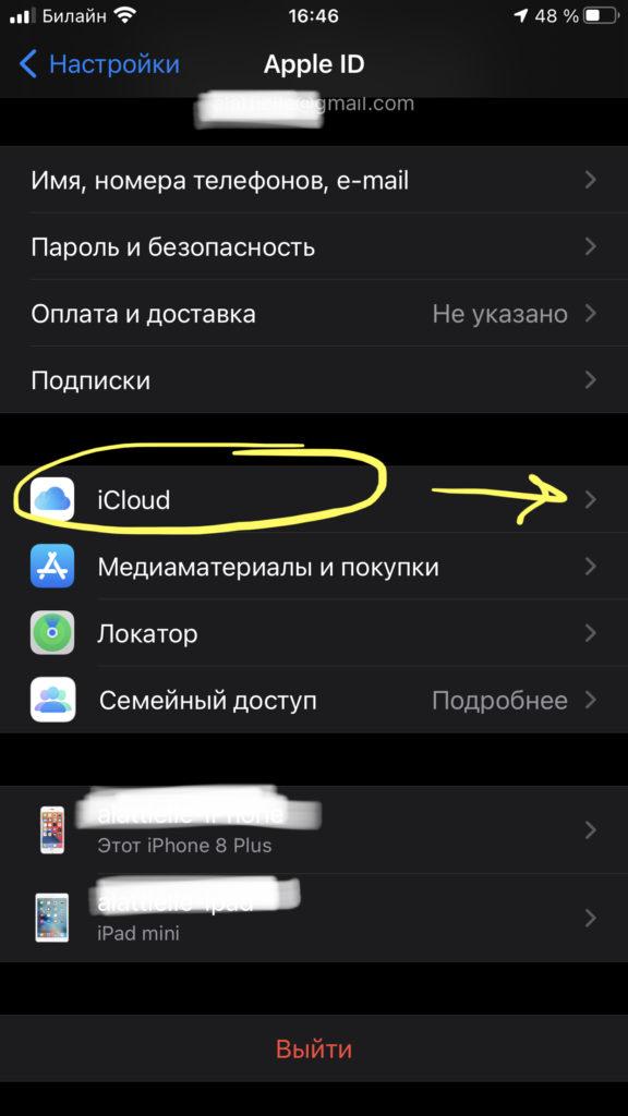 Заходим в меню iCloud, чтобы поверить, какие программы синхронизируются с хранилищем