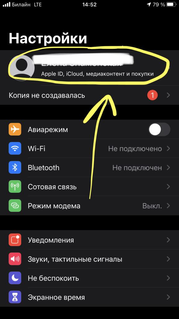 Чтобы создать бэкап заметок в облако, заходим в Настройках в «шапку» - Apple ID, iCloud и т.д.