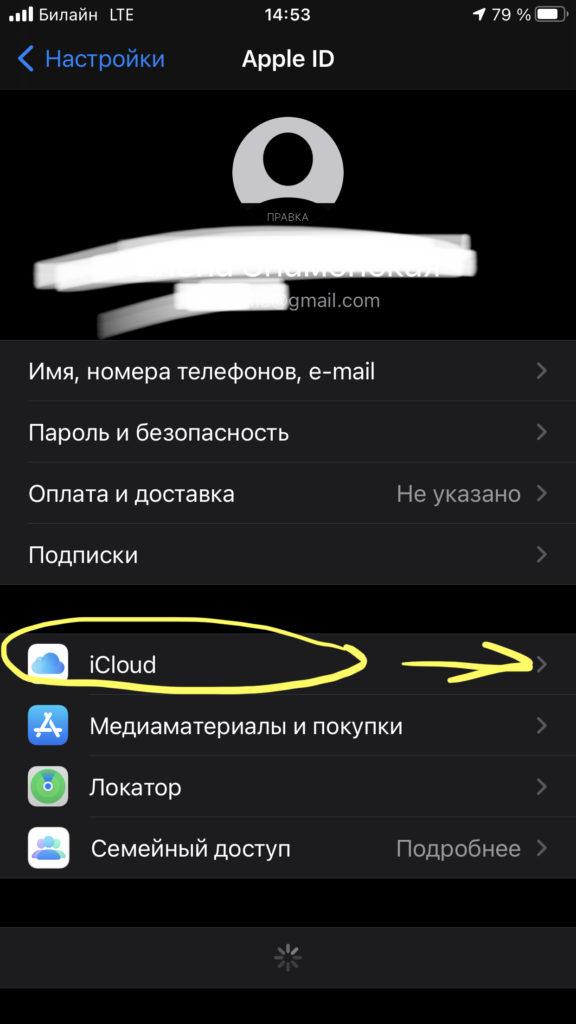Выбираем iCloud, чтобы настроить бэкап заметок